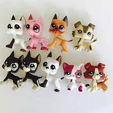 Lps Halloween Costumes Lps Dane Littlest Pet Shop Ebay