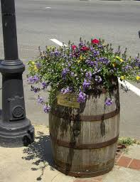 self watering planters coming to downtown wakefield mark sardella