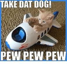 Pew Pew Pew Meme - take dat dog pew pew pew meme on me me