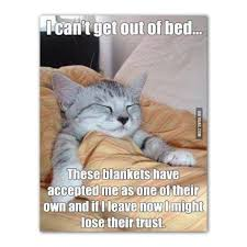 Saturday Morning Memes - the2oc on twitter lazy weekend mornings lazy sunday saturday