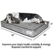 petfusion serenitylounge solid 4 u2033 memory foam dog bed for medium