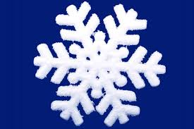 how to make borax crystal snowflakes holiday science project