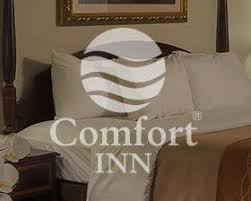 Comfort Inn In New Orleans Skuba Design Studio Web Design Web Development Graphic