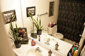 apartment bathroom decor ideas to decorate a small apartment bathroom