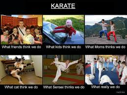 Martial Arts Memes - what do you think i do karate funniness pinterest