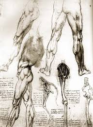Leonardo Da Vinci Drapery Life And Inventions Of Leonardo Da Vinci 2