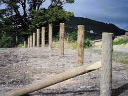 fence posts goldpine