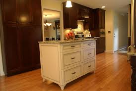 Bamboo Kitchen Cabinets by Flooring Exciting Traditional Kitchen Design With Dark Kitchen