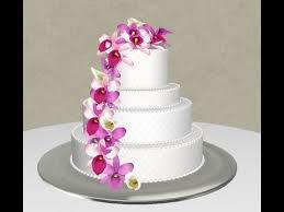 wedding cake design pro software youtube