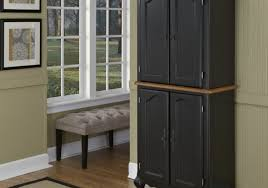 Cabinet For Home Kitchen Cool Kitchen Ideas With Black Cabinets Awesome Floor