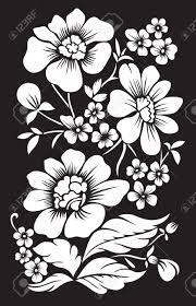 imagenes blancas en fondo negro fondo negro con flores blancas decoración ilustraciones vectoriales
