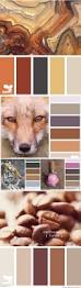Warm Bathroom Paint Colors by Top 25 Best Warm Color Schemes Ideas On Pinterest Warm Colors