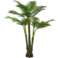 plant for office amazon com artificial palm plant for office house decor 5 35 feet