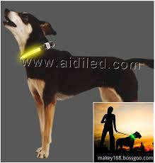 Usb Waterproof Rechargeable Light Dog Collar