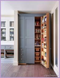 kitchen pantry cabinet design ideas 10 best kitchen pantry cabinet design ideas 1homedesigns
