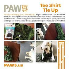 Challenge Do You Tie It Up Shirt Tie Up Challenge You Pup S Sniffer Health