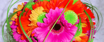 blooms flowers blooms flowers things your local florist in eagle id 83616