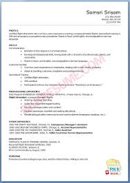 Flight Attendant Resume Example Boutique Owner Resume Free Resume Example And Writing Download