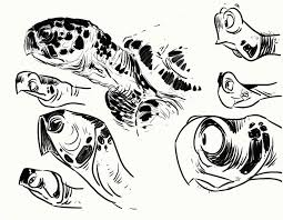 sea turtle sketch by goosezilla on deviantart