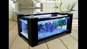 Amazing Aquarium Fish Ideas  Creative Home Design Fish - Creative home designs