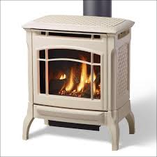 Big Lots Electric Fireplace Living Room Magnificent Electric Fireplace Costco Big Lots