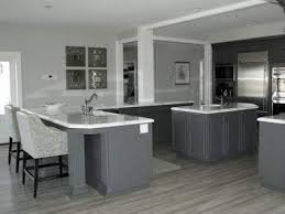 modern grey kitchen cabinets kitchen with dark wood floors and white cabinets the best quality