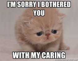 Depressed Pug Meme - list of synonyms and antonyms of the word i m sad meme