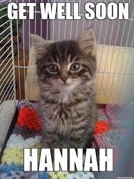 Soon Cat Meme - get well soon kitty weknowmemes generator