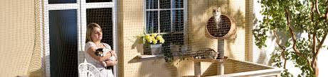 katzenschutz balkon wie sie ihren balkon mit einem katzennetz absichern fressnapf