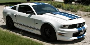 white mustang blue stripes important stripe pic request mustangforums com
