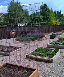 how to build a trellis archway 5 uses for livestock panels peak prosperity
