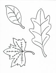 free printable leaves colouring pages leaf color fall season leaf