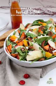 easy thanksgiving salads 437 best fresh fall flavors images on pinterest