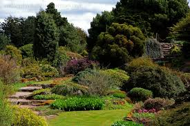 Edinburgh Botanic Gardens The Royal Botanic Garden Edinburgh A Photo Essay Endlessly