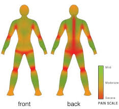 tattoo pain level chart female tattoo pain map tattoo collections