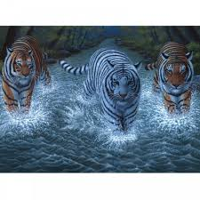 three tigers large paint by numbers royal u0026 langnickel from