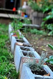 96 best cinder block gardens images on pinterest cinder block