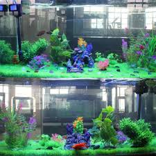 cheap nitrate in fish tank find nitrate in fish tank deals on