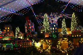 Zoo Lights Houston Hours by The Bayou Botanist December 2015