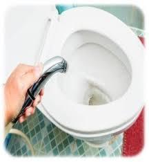 Why Have A Bidet Best Bidet 2017 Best Bidet Toilet Seat And Portable Bidet
