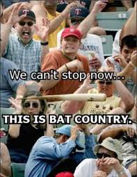Baseball Bat Meme - image 260881 we can t stop here this is bat country know