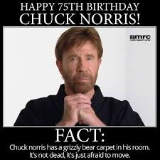 Geek Birthday Meme - the 25 best chuck norris birthday ideas on pinterest best chuck