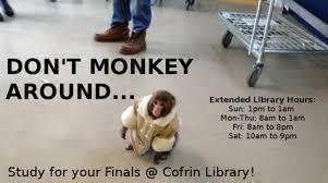 Ikea Monkey Meme - ikea monkey memes darwin the macaque becomes an internet