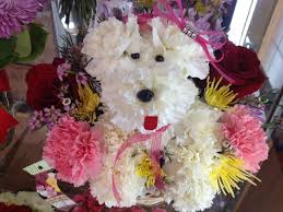 Flower Delivery Las Vegas Whats In Our Cooler 8 21 13 The Dancing Dandelion Flower Shop