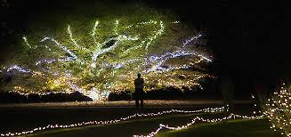 norfolk botanical gardens christmas lights 2017 botanical garden christmas lights webzine co