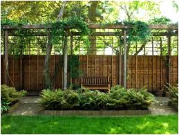 Landscaping Ideas For Backyard Privacy Landscape Ideas For Privacy Katakori Info