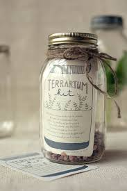 diy gift terrarium kit wit u0026 whistle