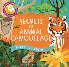 books with light in the title sal animal camouflage kane miller books friends