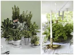 Potted Plants Wedding Centerpieces by Potted Plant Wedding Reception Flowers Wedding Planning Tips