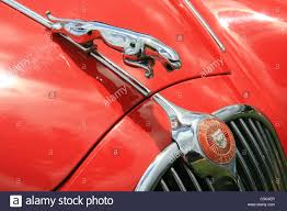 the front of a jaguar car focusing on the jaguar leaping cat
